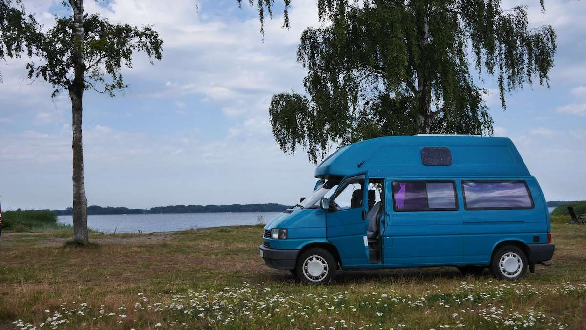 VW Bus T4 Manfred California gruen Camper Bulli mieten Rostock bincampen Seite in der Natur Blumenwiese